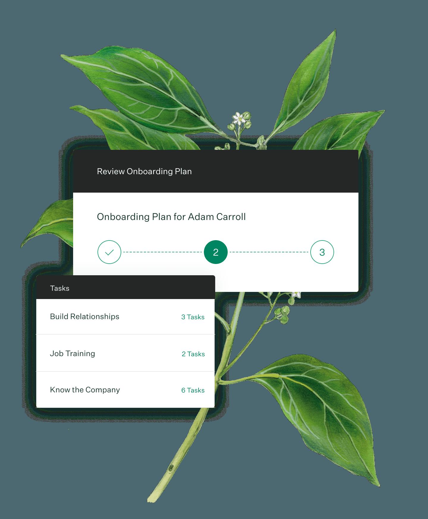 Greenhouse Onboarding plan